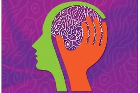 World Brain Day. Як змусити мозок працювати продуктивно?
